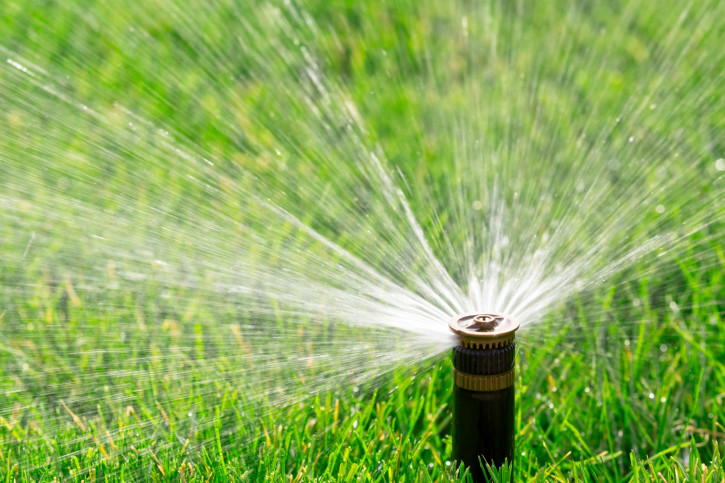Best Time To Water Gr And 12 Other Lawn Watering Tips