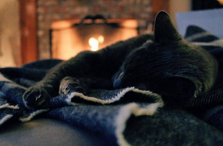 how to stay warm without power